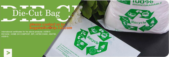 YANTAI BAGEASE PACKAGING PRODUCTS CO.,LTD. Contrôle de qualité 19